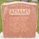 Mary <I>Vincent</I> Adams