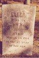 Eliza Blackman <I>Sowden</I> Hawkins