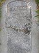 William Bayhouse
