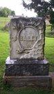 Profile photo:  Alvira <I>McCormick</I> Bailey