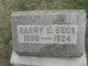 Harry Ervin Beck