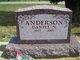Daniel N Anderson