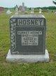 Sarah E. <I>Stanberry</I> Hoseney
