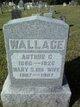 Mary Elizabeth <I>Skelton</I> Wallace