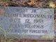 "William Lewis ""Billy Jr"" McGowan Jr."
