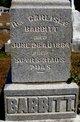 Rev Carlisle Babbitt