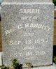 Sarah Babbitt