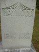 Profile photo:  Amos Haywood