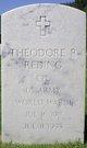 Theodore R Reding