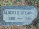 Profile photo:  Albert E. Stearns