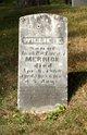 Willie E Merrick