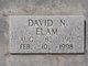 David Nelson Elam