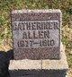 Profile photo:  Catherine Rebecca <I>Wade</I> Allen