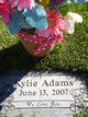 Profile photo:  Kylie Adams