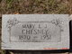 Profile photo:  Mary L J <I>Morris</I> Chesney