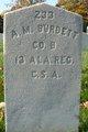 Alfred Marion Burdett