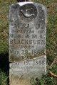 M.J.J. Blackburn