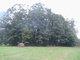 Ankeny Cemetery