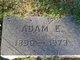 Adam E Link