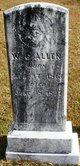 William Chastain Allen