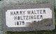 Harry Walter Holtzinger