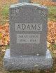 Sarah <I>Dixon</I> Adams