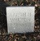 Profile photo:  Aaron Nelson Walton