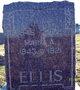 Mary A <I>Kirkendall</I> Ellis