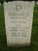 Herbert Elliott Hopping