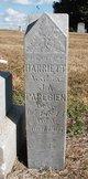 Harriett Paregien