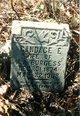 Profile photo:  Candace E. <I>Robinson</I> Burgess