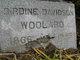 Birdine <I>Davidson</I> Woolard