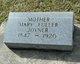 Mary Ann <I>Fuller</I> Joyner
