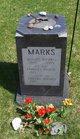 William Michael Marks