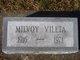 Milvoy Vileta