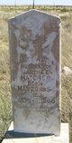 James Alvin Hatcher