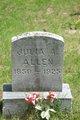 Julia A. <I>Martin</I> Allen