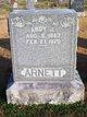 "Andrew Jacob ""Andy"" Arnett"