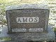 Nora Angeline <I>Johnson</I> Amos
