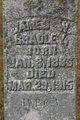 James W Bradley