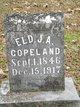 Elder James Amos Copeland