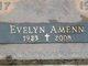 Evelyn S. <I>Hastedt</I> Amenn