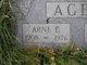 Profile photo:  Arne E. Agen