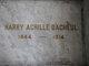 Harry Achille D'Acheul