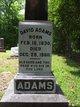 Profile photo:  David A Adams