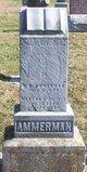 William B. Ammerman