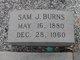 Samuel James Burns