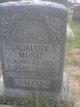 Guadalupe S Muniz