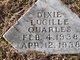 Dixie Lucille Quarles
