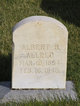 Albert Bailey Allred